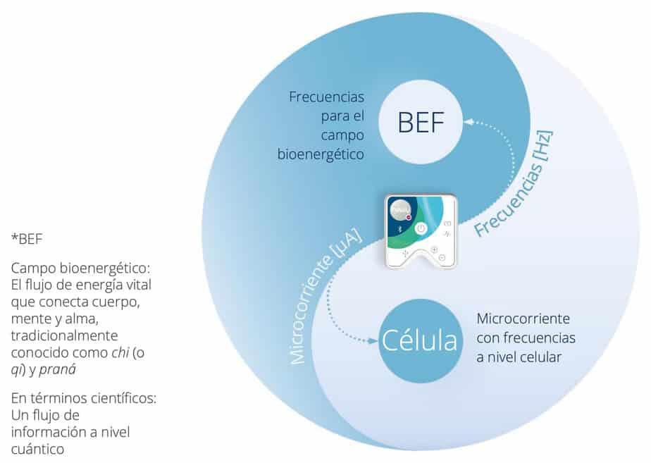 Frecuencias para el campo bioenergético
